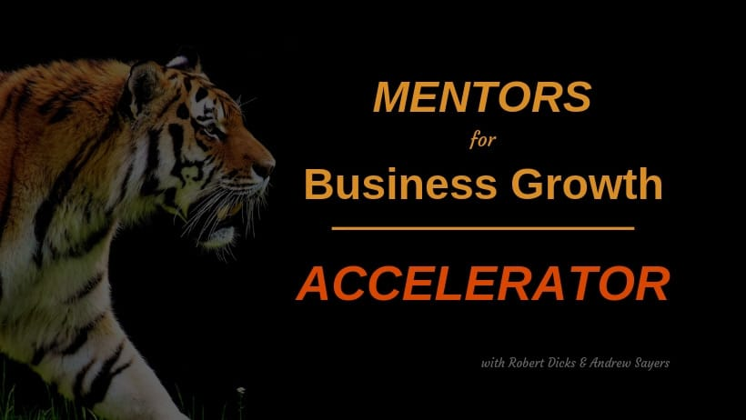 Business Accelerator Programme